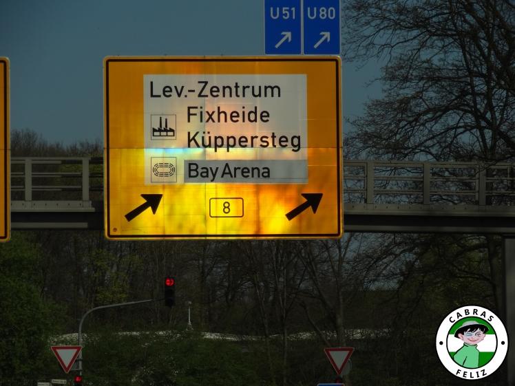 bayer07