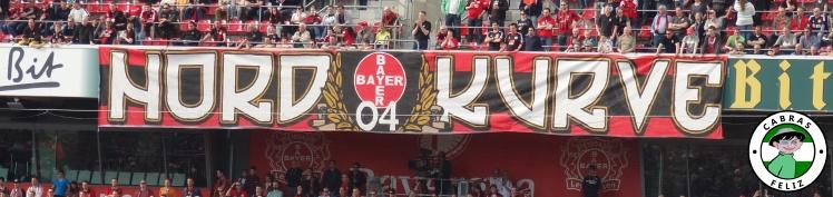 bayer22