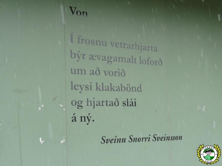 ijsland37