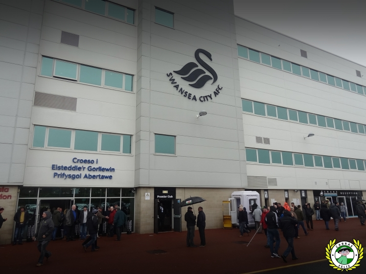 swanliv06